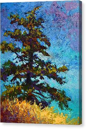 Lone Pine II Canvas Print by Marion Rose