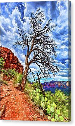 Lone Tree At Airport Mesa Canvas Print by ABeautifulSky Photography