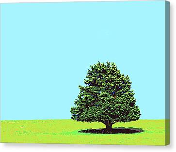 Lone Tree Canvas Print by Dominic Piperata