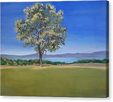Lone Tree Hill Canvas Print