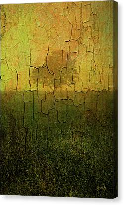 Lone Tree In Meadow -textured Canvas Print by Dave Gordon