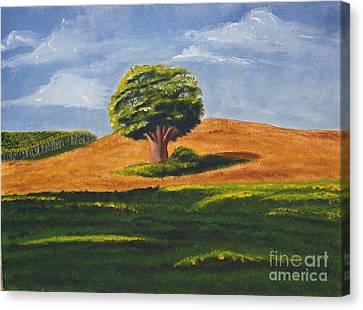 Lone Tree Canvas Print by Mendy Pedersen
