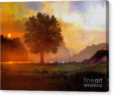 Lone Tree Canvas Print by Robert Foster