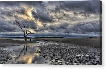 Lone Tree Under Moody Skies Canvas Print