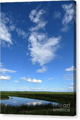 Lonely As A Cloud Canvas Print