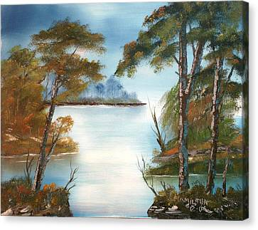 Lonely Bay Canvas Print by Larry Hamilton