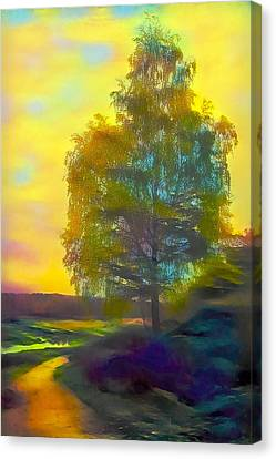 Lonely Birch In Autumn Rural Road Canvas Print