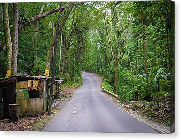 Lonely Country Road Canvas Print