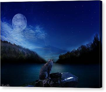 Lonely Hunter Canvas Print