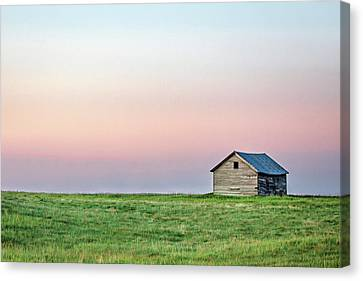 Lonely Old Shed Canvas Print by Todd Klassy