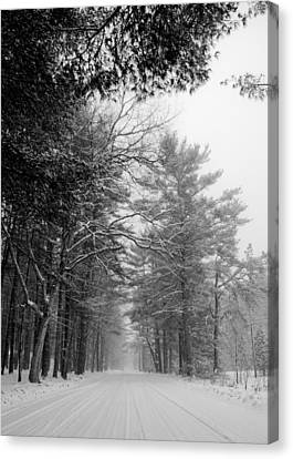 Lonely Road Canvas Print by Edward Myers