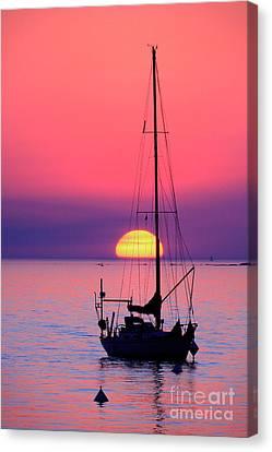 Canvas Print featuring the photograph Lonely Sunset by Bernardo Galmarini
