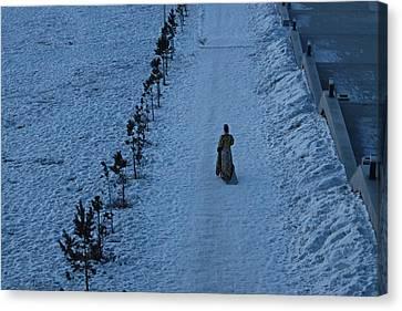 Lonely Walk/tsagaan Sar Canvas Print by Diane Height