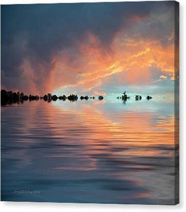 Lonesome Bird Canvas Print by Jerry McElroy
