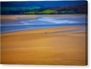 Lonesome Man Walking On Sand Beach Canvas Print by Panoramic Images