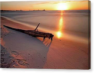 Canvas Print featuring the photograph Long Beach Driftwood - Mississippi - Sunrise by Jason Politte