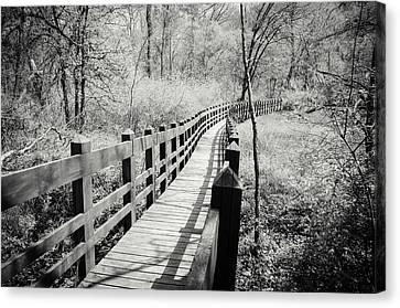 Long Bridge Canvas Print by Amy Turner