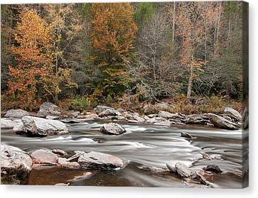 Zeus Canvas Print - Chattooga River 14 by Derek Thornton