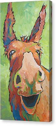 Long Face Canvas Print by Sandy Tracey