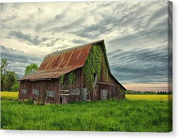 Canvas Print - Long Forgotten by Donnie Smith