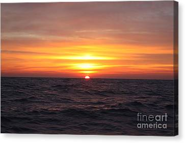 Long Island Winter Sunrise Canvas Print by John Telfer