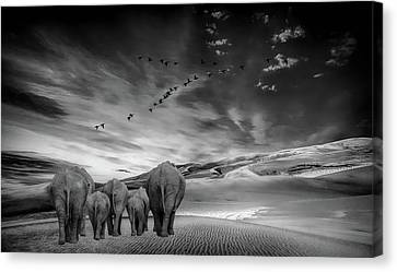 Canvas Print - Long Journey Home by Andrea Kollo