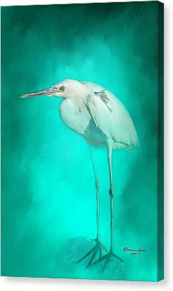 Great White Heron Canvas Print - Long Legs by Marvin Spates