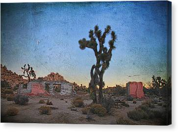 Long, Long Ago Canvas Print by Laurie Search