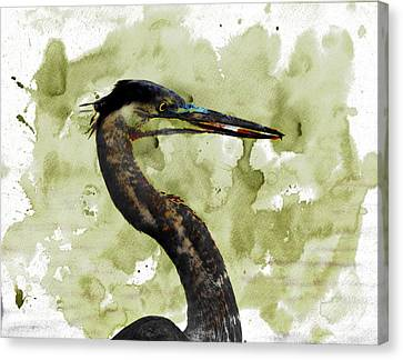 Long Neck 5 Canvas Print