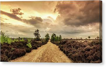 Long Road Ahead Canvas Print by Tim Abeln