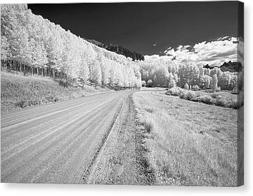 Canvas Print featuring the photograph Long Road In Colorado by Jon Glaser