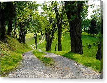 Long Road Canvas Print