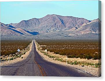 Long Road Out Of Beatty Canvas Print by Steve  Gass