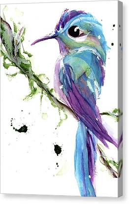 Canvas Print featuring the painting Long-tailed Sylph by Dawn Derman