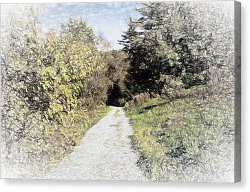 Long Trail Canvas Print