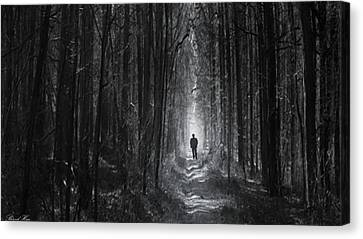 Canvas Print featuring the photograph Long Way Home by Bernd Hau