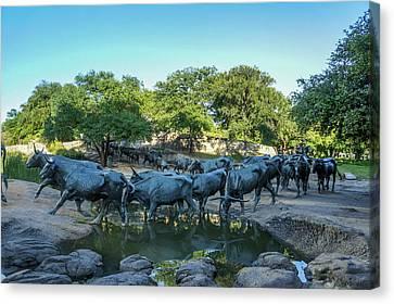 Longhorn Cattle Sculpture Canvas Print by Art Spectrum
