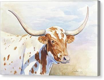 Longhorn Canvas Print by Don Dane