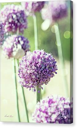 Canvas Print featuring the photograph Longing For Summer Days by Linda Lees