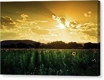 Canvas Print featuring the photograph Longmont Summer Skies 2 by John De Bord
