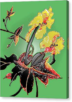 Loofah Gourd Flower - Three Dimensional Canvas Print by Merton Allen
