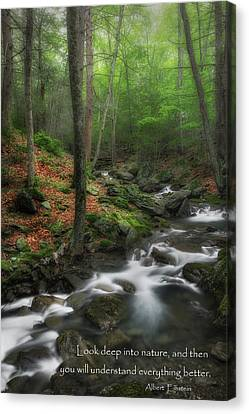 Western Ma Canvas Print - Look Deep Into Nature by Bill Wakeley