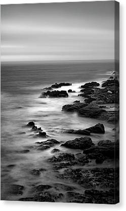 Look From The Past Canvas Print by Jon Glaser