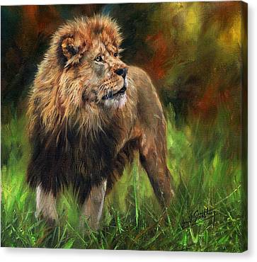 Canvas Print featuring the painting Look Of The Lion by David Stribbling
