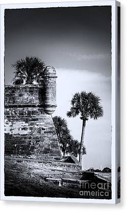 Look Out - Bw Canvas Print