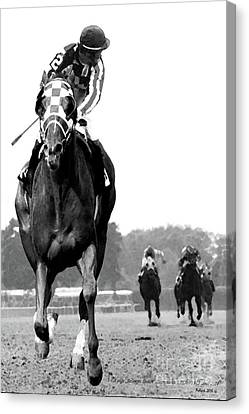 Looking Back, 1973 Secretariat, Stretch Run, Belmont Stakes Canvas Print