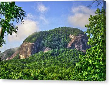Smokey Mountains Canvas Print - Looking Glass Rock Close Up by Reid Callaway