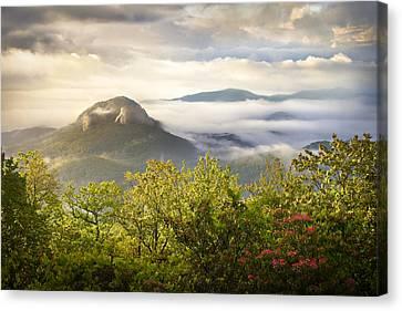 Looking Glass Sunrise - Blue Ridge Parkway Landscape Canvas Print by Dave Allen