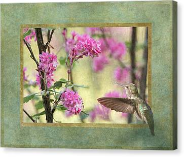 Looking Into Spring Canvas Print by Angie Vogel