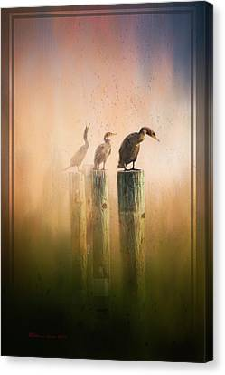 Looking Into The Mist Canvas Print by Marvin Spates